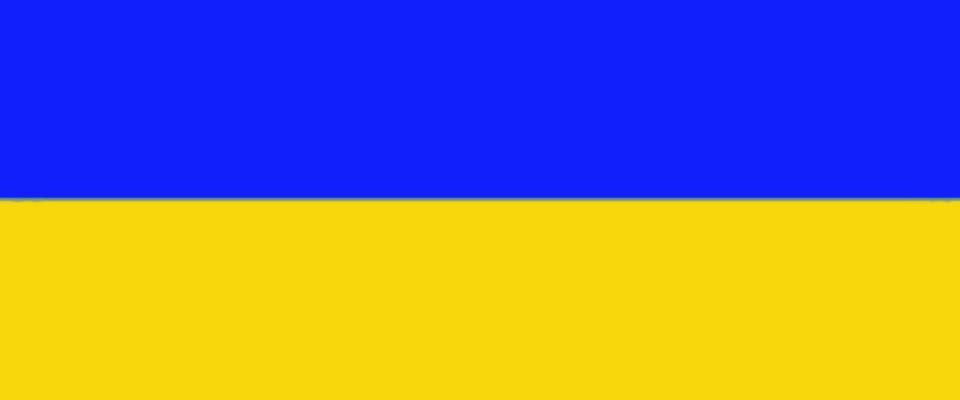Украинский flag