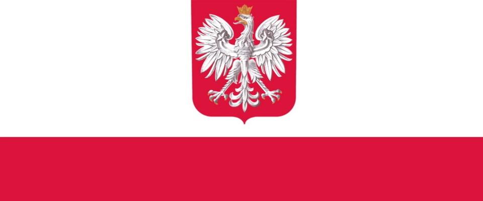 Польский  flag