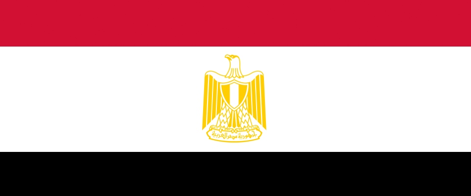 Арабский  flag